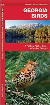 Georgia Birds  A Folding Pocket Guide to Familiar Species