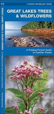 Great Lakes Trees & Wildflowers  A Folding Pocket Guide to Familiar Species