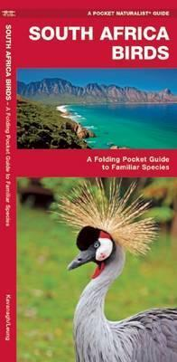 South Africa Birds : A Folding Pocket Guide to Familiar Species