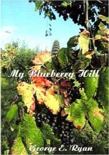 My Blueberry Hill