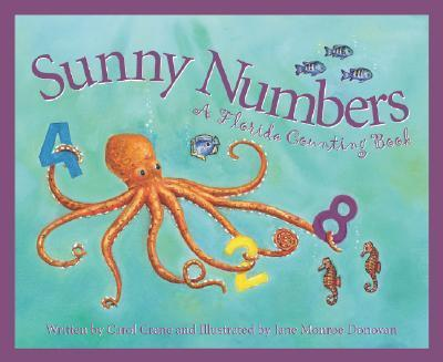 Sunny Numbers