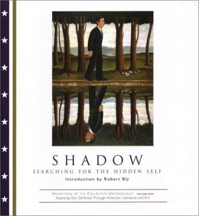 Shadow: Searching for the Hidd