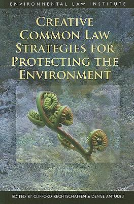 Creative Common Law Strategies for Protecting the Environment