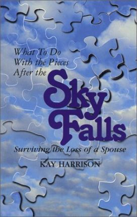 What to Do with the Pieces After the Sky Falls