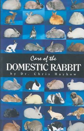 Care of the Domestic Rabbit