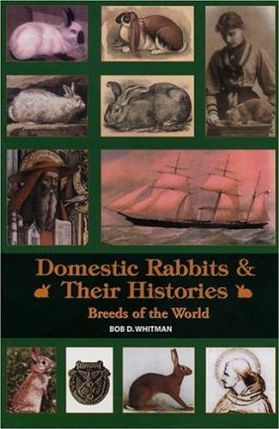 Domestic Rabbits & Thier Histories