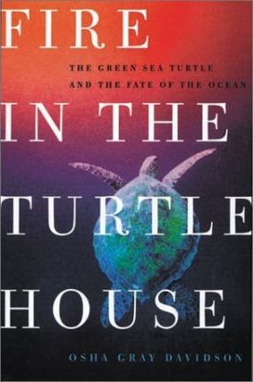 Fire in the Turtle House