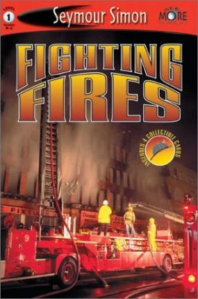 Fighting Fires: Level 1