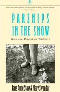 Parsnips in the Snow