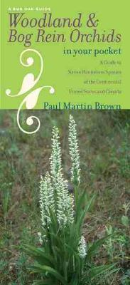 Woodland and Bog Rein Orchids in Your Pocket