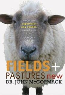 Fields & Pastures New