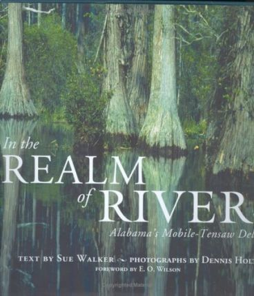 In the Realm of Rivers