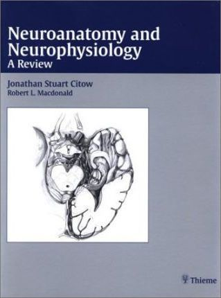 Neuroanatomy and Neurophysiology  A Review