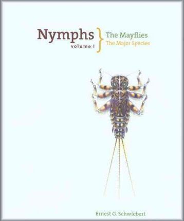 Nymphs, The Mayflies  The Major Species