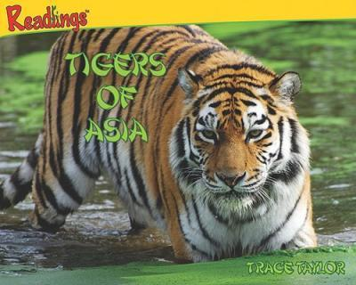 Tigers of Asia