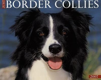 Just Border Collies 2007 Calendar