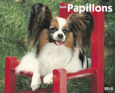 Just Papillons