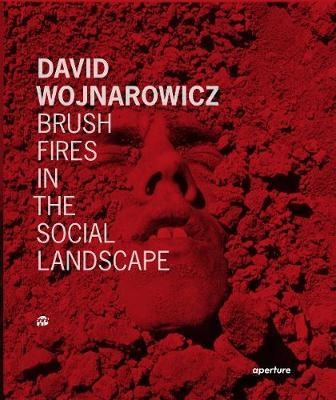 David Wojnarowicz  Brush Fires in the Social Landscape