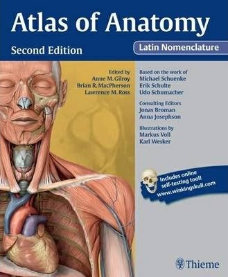 atlas of anatomy latin nomenclature : anne m. gilroy : 9781604067477, Muscles