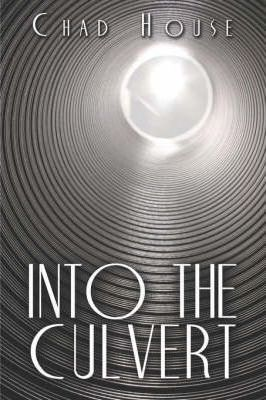 Into the Culvert Cover Image