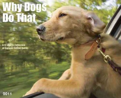 Why Dogs Do That Calendar  A 12-Month Collection of Curious Canine Quirks