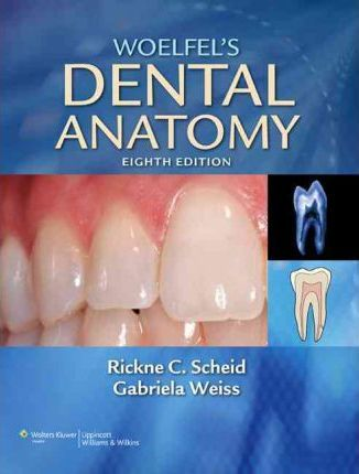 Woelfel's Dental Anatomy : Its Relevance to Dentistry