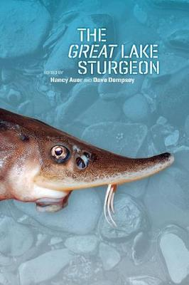 The Great Lake Sturgeon