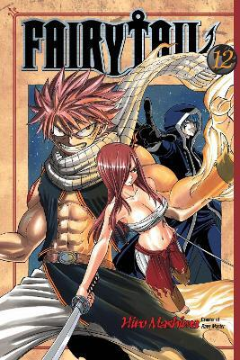 Fairy Tail 12