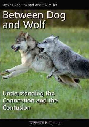 Between Dog and Wolf Cover Image