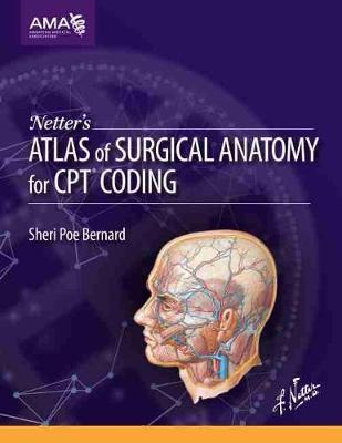 Netters Atlas Of Surgical Anatomy For Cpt Coding American Medical