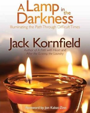 Lamp in the Darkness Cover Image