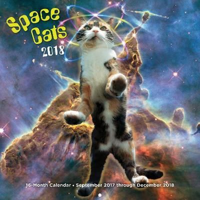 Space Cats 2018
