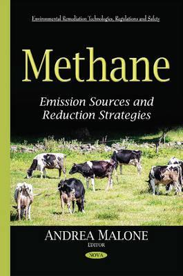 Methane  Emission Sources & Reduction Strategies