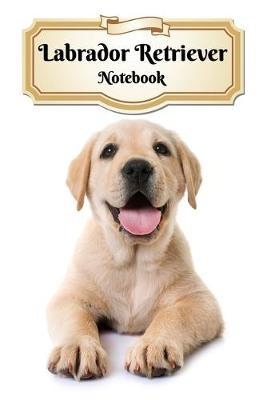 Labrador Retriever Notebook  Puppy - Composition Book 150 pages 6 x 9 in. - College Ruled - Writing Notebook - Lined Paper - Soft Cover - Plain Journal
