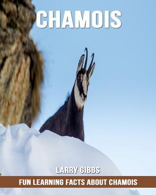 Fun Learning Facts about Chamois