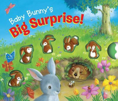 Soft to Touch Tales Baby Bunny's Big Surprise!
