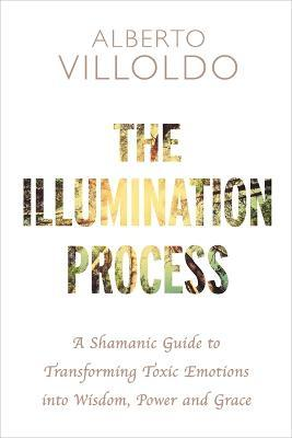 The Illumination Process : A Shamanic Guide to Transforming Toxic Emotions into Wisdom, Power, and Grace