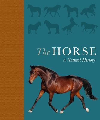 The Horse : A natural history