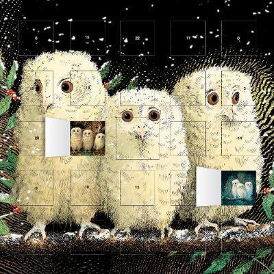 Owl Babies advent calendar (with stickers)