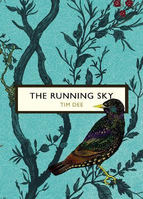 The Running Sky (The Birds and the Bees) Cover Image