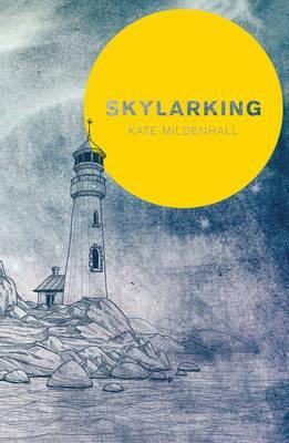 Skylarking: Striking fiction rooted in adolescent friendship and desire