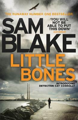 Little Bones : A disturbing Irish crime thriller
