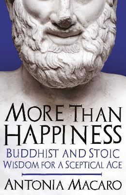 More Than Happiness
