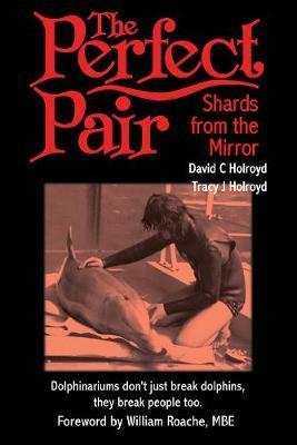 The Perfect Pair: Shards from the Mirror 3