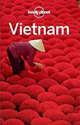 Lonely Planet Vietnam - Lonely Planet, Iain Stewart, Brett Atkinson, Austin Bush, David Eimer, Nick Ray, Phillip Tang