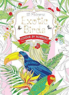 Exotic Birds Postcard Book : Colour by Numbers