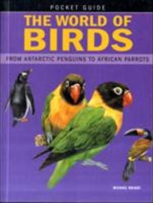 World of Birds  From Antarctic Penguins to African Parrots