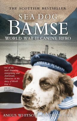 Sea Dog Bamse