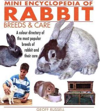 Mini Encyclopedia of Rabbit Breeds and Care