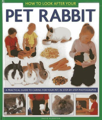 How to Look After Your Pet Rabbit Cover Image